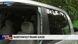 Numerous vehicles vandalized in northwest Miami-Dade