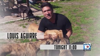 TONIGHT AT 11 - Are thousands of dogs destined to die because of a new&hellip&#x3b;