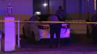 Car riddled with bullet holes after drive-by shooting