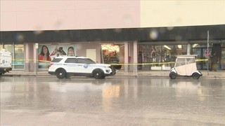 Car crashes into discount store in Miami