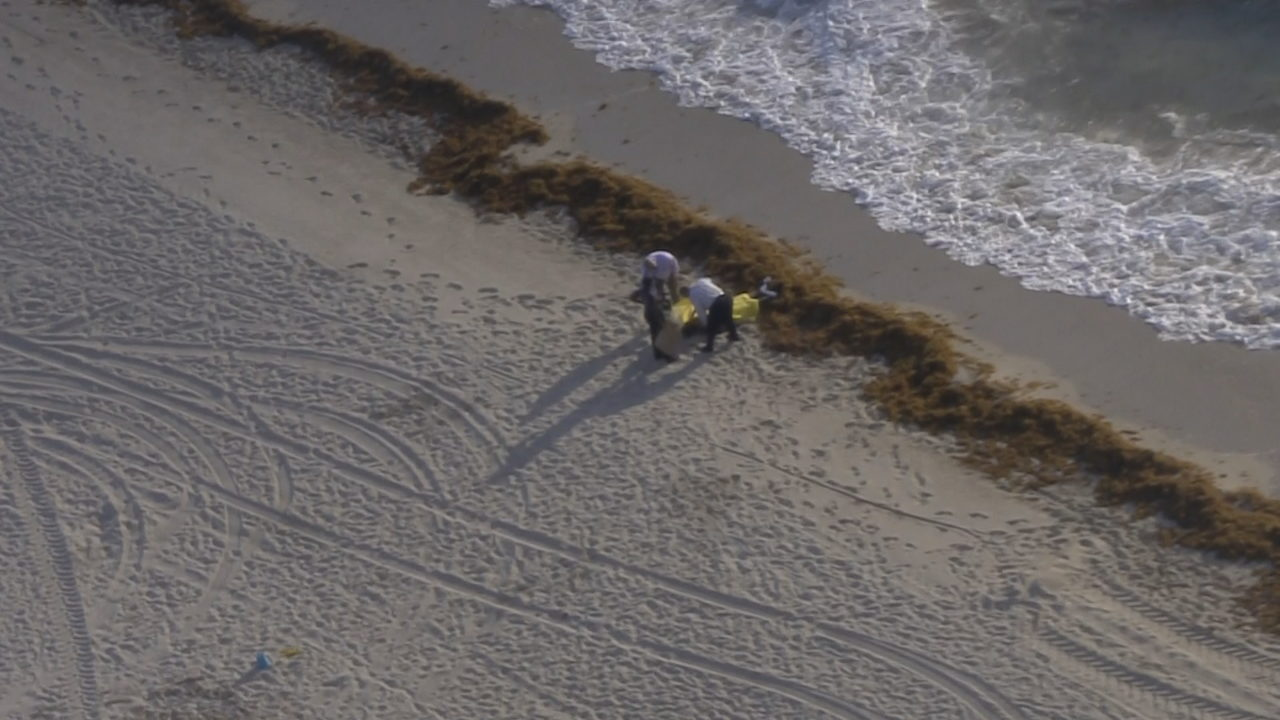 Man found dead in ocean, pulled from water