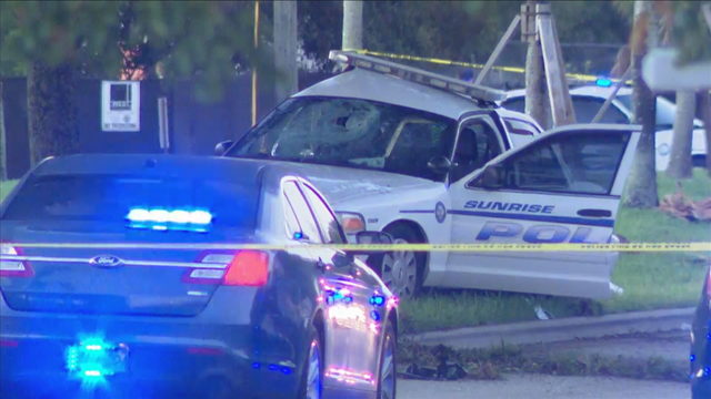 Sunrise police officer crashes patrol car to avoid animal, officials say