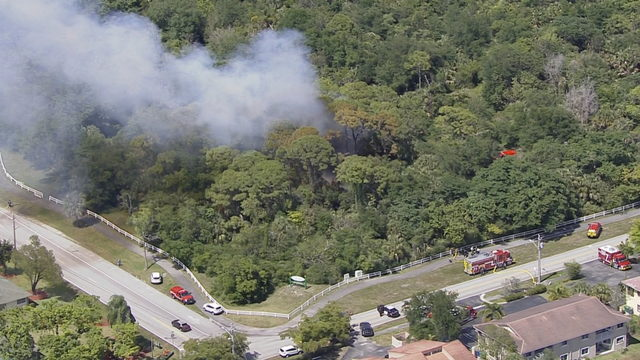 Firefighters battle brush fire at nature preserve in Coral Springs