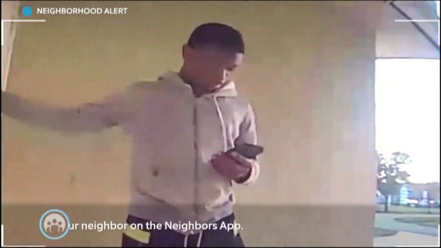 Burglar caught on camera targeting multiple homes in Davie neighborhood