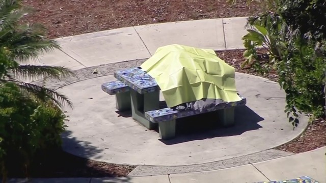 Pregnant mother of 2 found dead on picnic table in southwest Miami-Dade