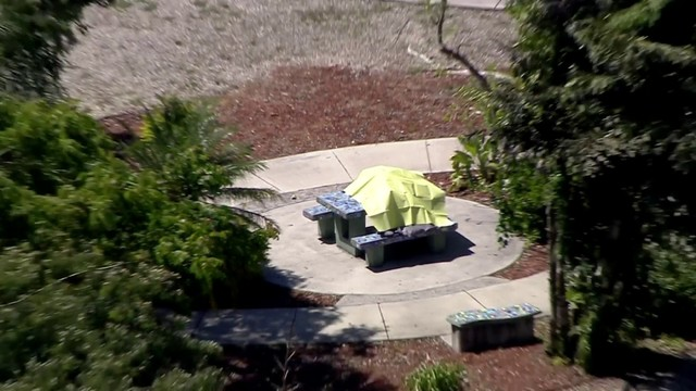 Woman found dead on picnic table