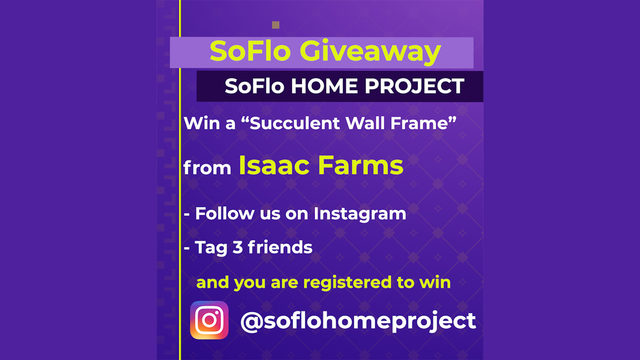 Win a succulent wall frame in SoFlo Home Project giveaway