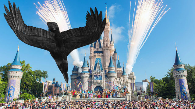 Woman sues Disney World over dive-bombing bird attack