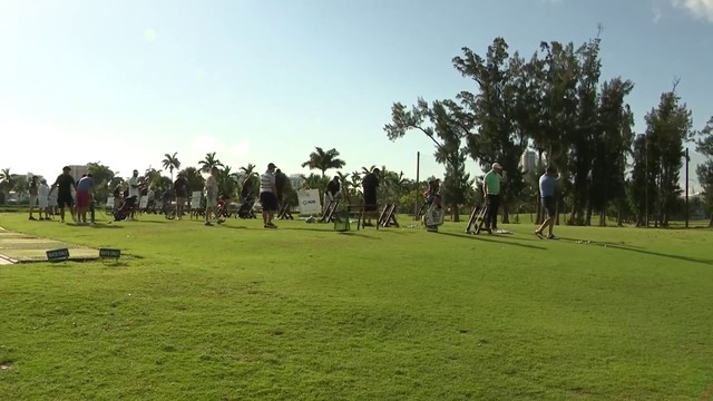 Dolphins go golfing for good cause