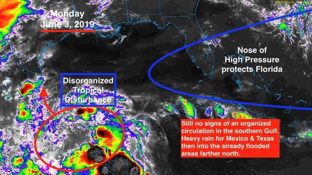 Watching disturbance in southern Gulf for organized circulation