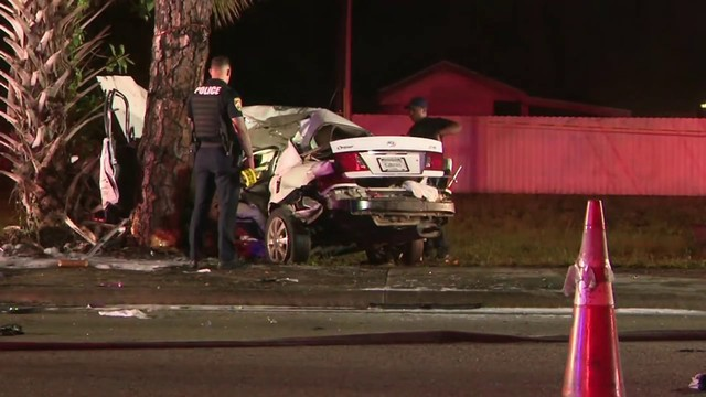 Multiple people hospitalized after car crashes into tree in Opa-locka