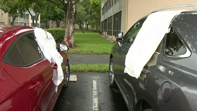 Thieves target senior living community, breaking into dozens of cars
