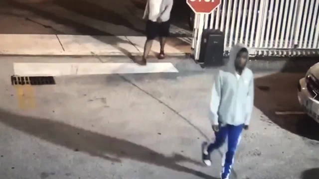 3 thieves caught on camera targeting van in Miami parking lot