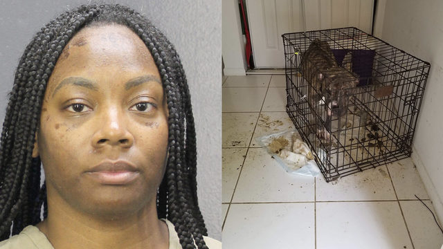 Sunrise woman arrested for animal cruelty