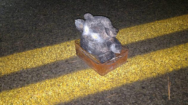 Photo of teddy bear bomb placed in road released by FBI