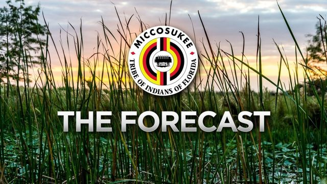 Local 10 Forecast Wednesday, June 19 Late Afternoon