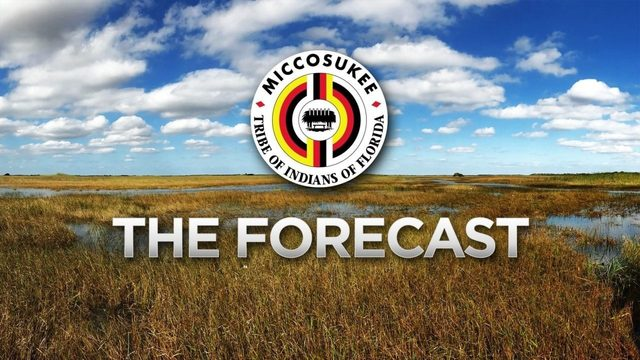 Local 10 Forecast Wednesday, June 19 Morning