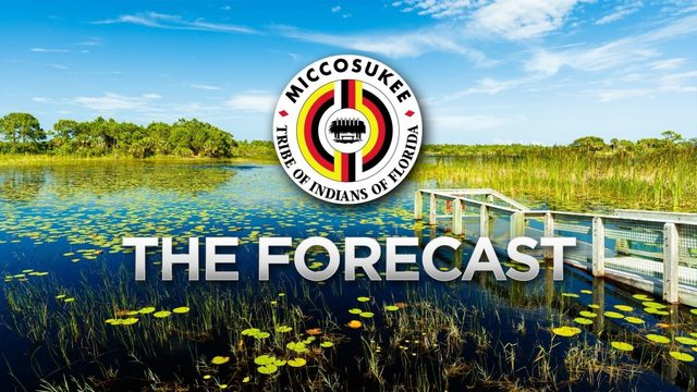 Local 10 Forecast, Sunday June 23 Morning