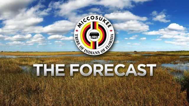 Local 10 Forecast, Tuesday June 25 Morning