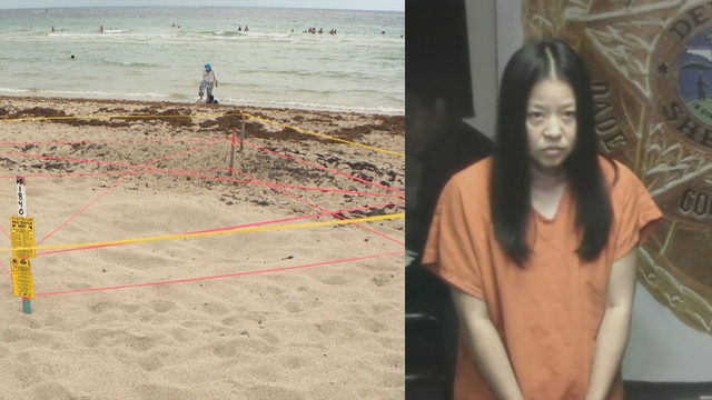 Woman accused of disturbing sea turtle nest held without bond after…