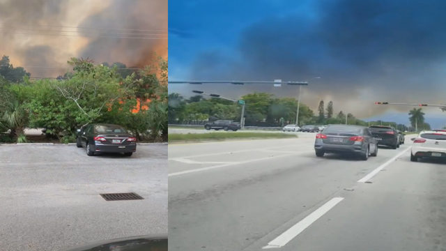 Brush fire burns in southwest Miami-Dade