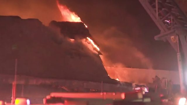 Fire breaks out at Pet Loss Center in Miami, authorities say