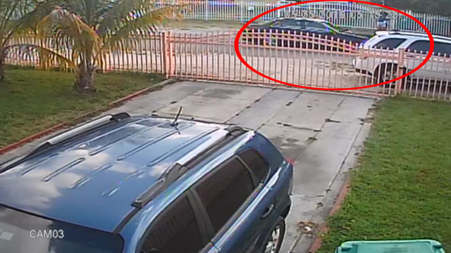 Armed robber snatches teen's cellphone in northwest Miami-Dade