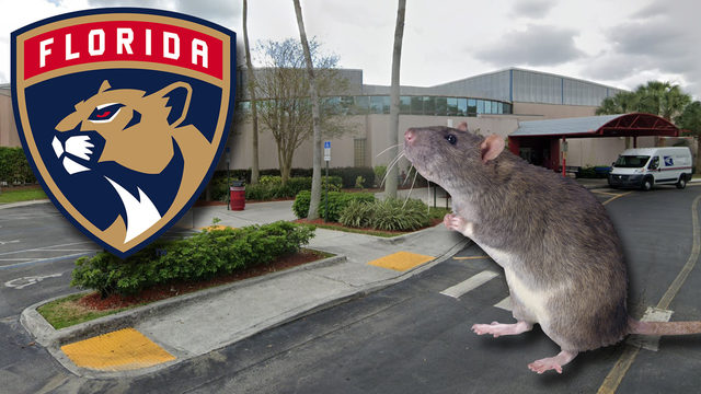 Rodent issue discovered at Florida Panthers Ice Den