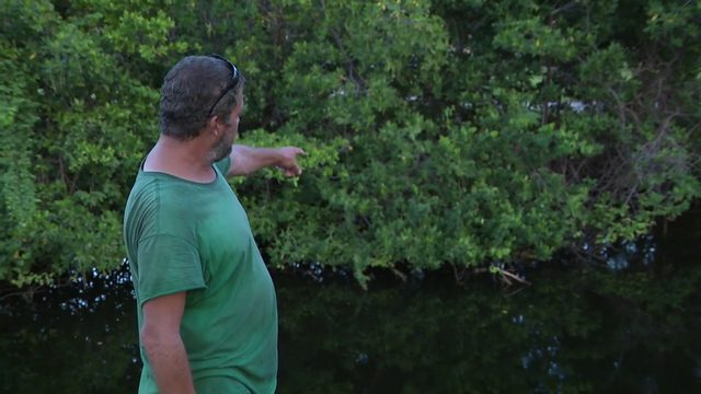 'It kept me awake all night,' man says after finding body floating in creek
