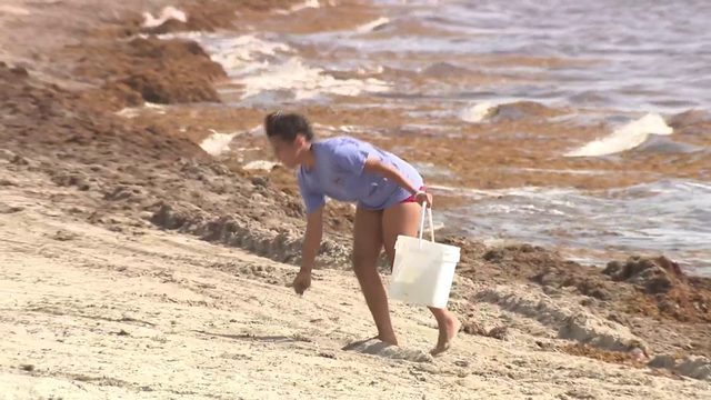Fill A Bag mission turns beach day into clean-up effort