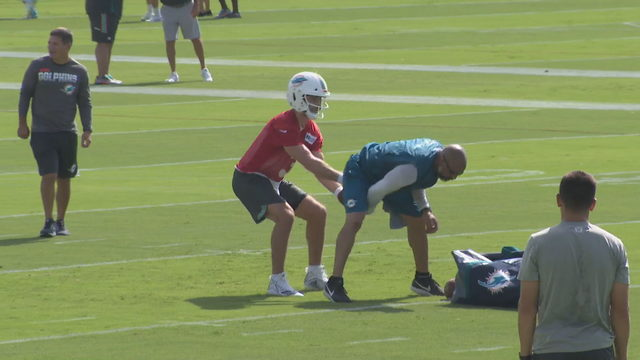 Dolphins open training camp under new regime
