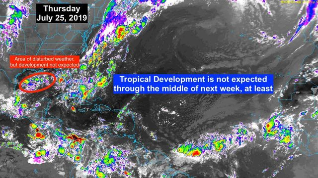 No development expected for area of disturbed weather