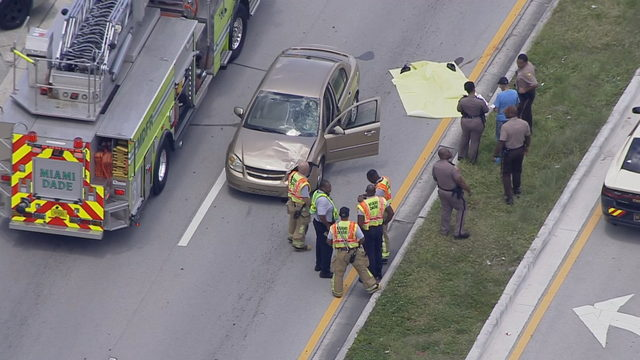 Man fatally struck by car in northeast Miami-Dade