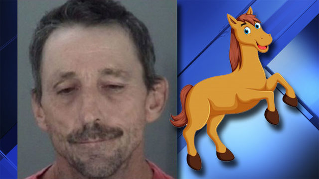 Florida man blames horse for breaking into home