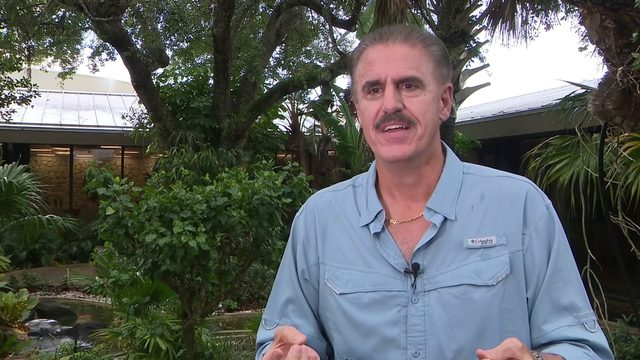 Zoo Miami's Ron Magill wants alligator hunters to follow Florida's rules