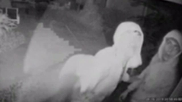 Surveillance show burglars outside Miami home