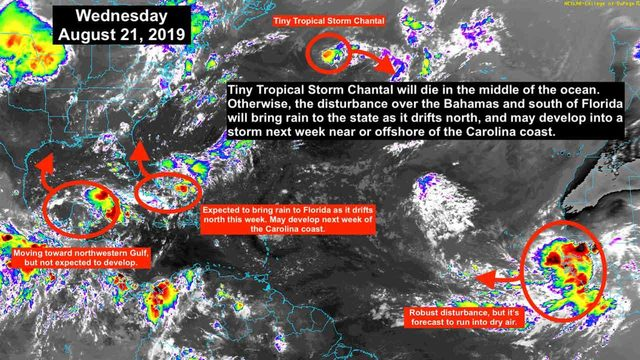 Tropical Chantal forms, but focus is on another disturbance closer to Florida