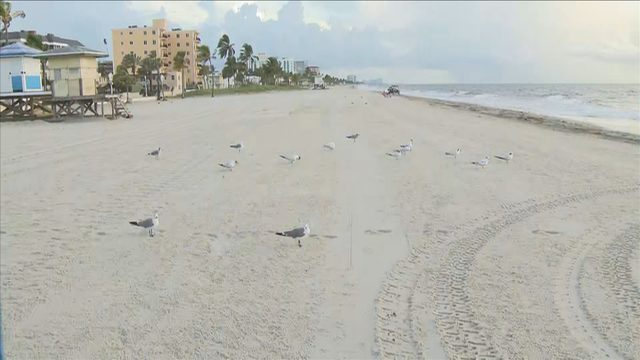 Hollywood Beach businesses see slowdown in customers despite latest forecast