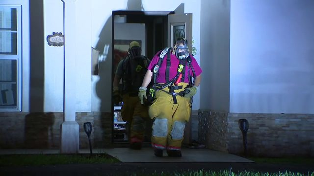 Firefighters rescue 2 dogs, 2 cats