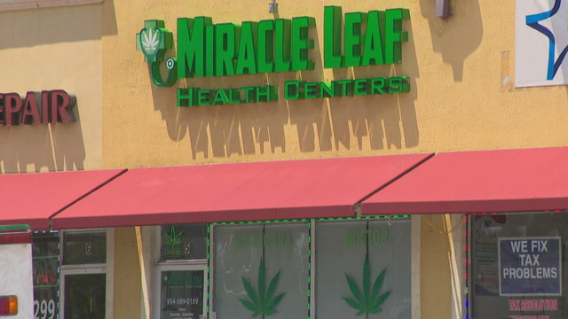 Residents uneasy about Hallandale Beach medical marijuana facility…