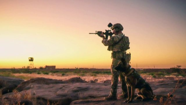 Animal advocates help retired U.S. military working dogs