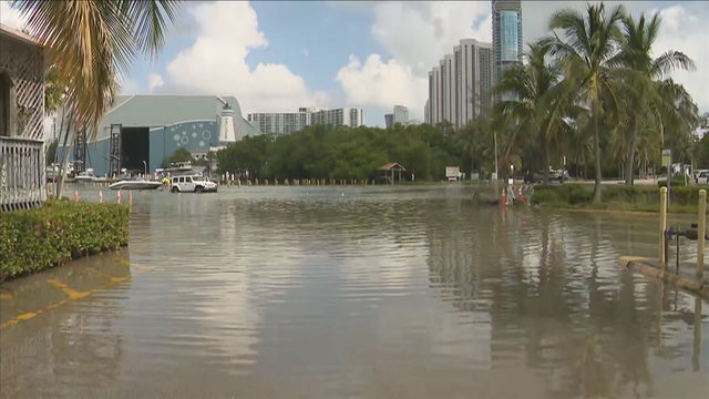 South Florida residents, business owners wary of seasonal King Tide