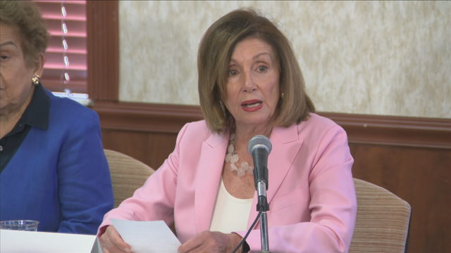 Nancy Pelosi makes appearance in South Florida