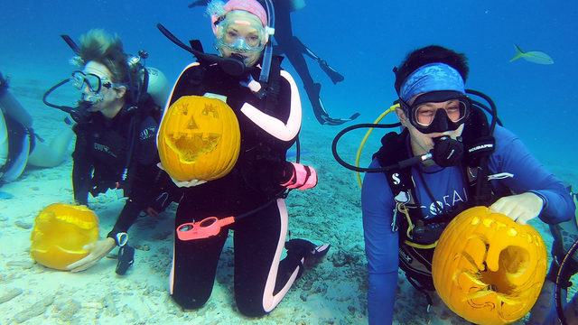 Florida Keys hold subsea pumpkin-carving contest