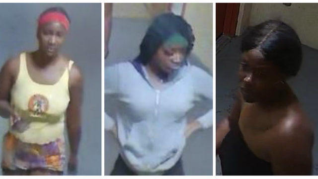 Hollywood police looking for 3 females in relation to homicide