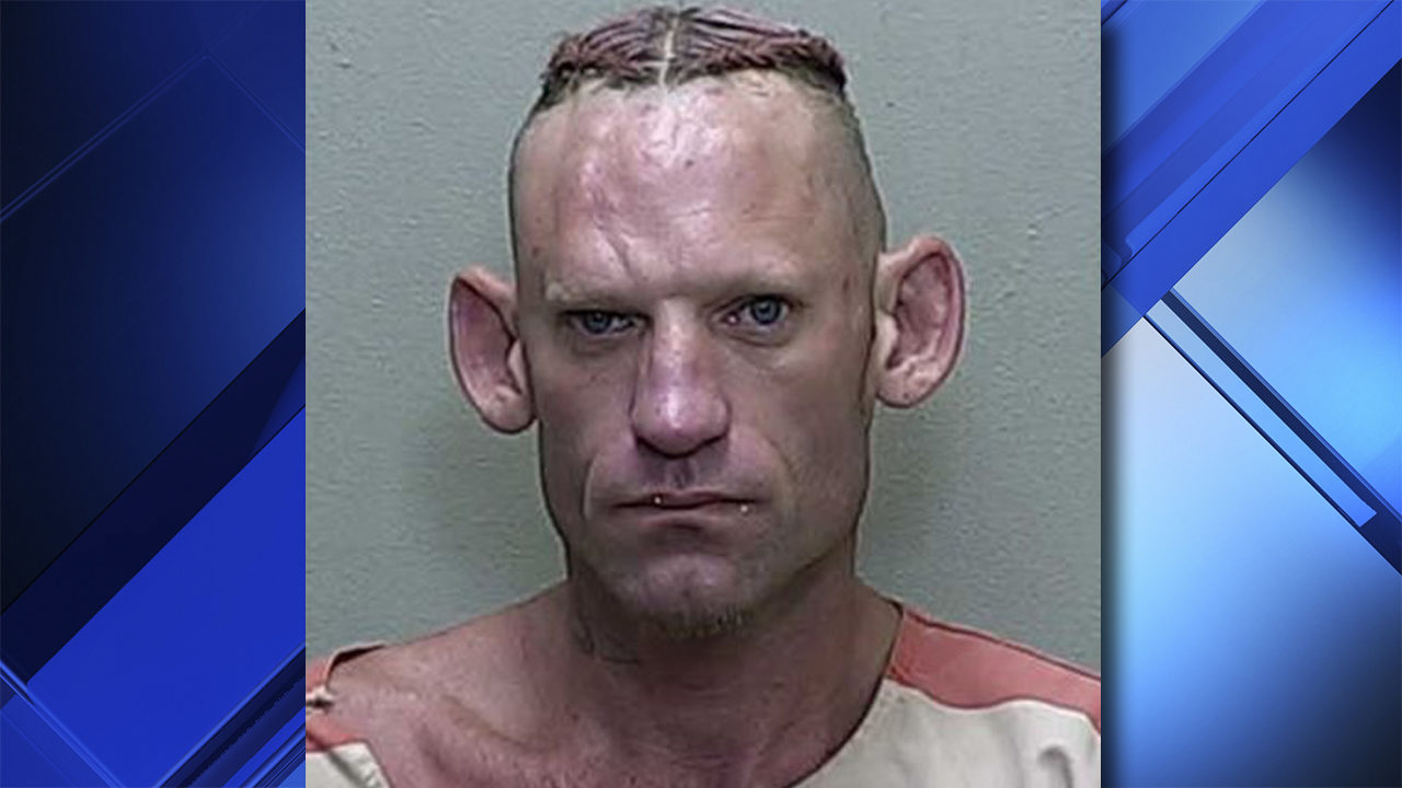 Florida man's mugshot hits viral status after arrest