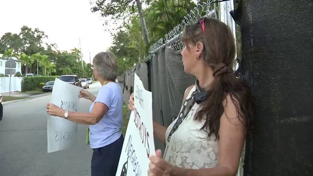 Woman chains herself to fence to save trees in Fort Lauderdale neighborhood