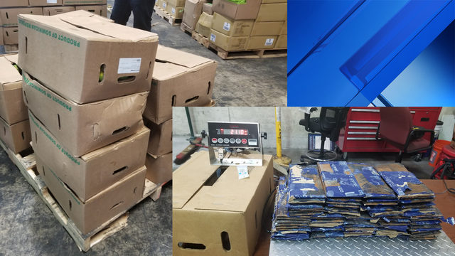 U.S. Customs agents find nearly 50 pounds of cocaine at Port Everglades