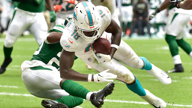 Dolphins WR Preston Williams out for the year